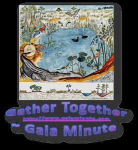 gather together pond
